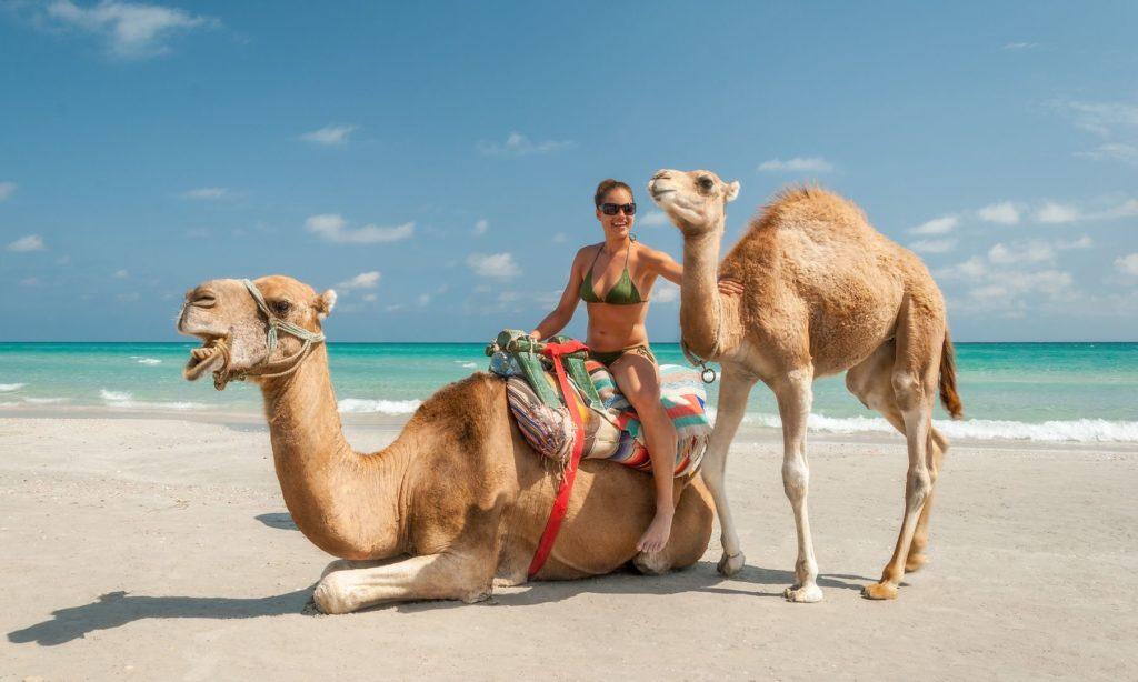 Отдых летом в Тунисе